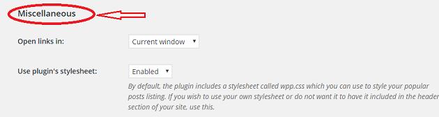WordPress Popular Postsの設定9.3