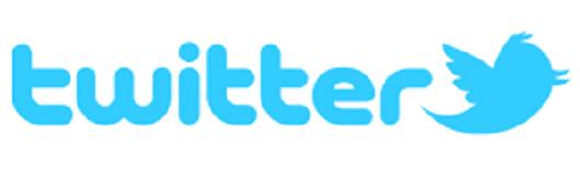 twitter1.1